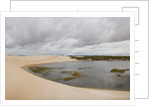 White Sand dunes and fresh water lakes at Lencois Maranheinses National Park, Brazil by Corbis