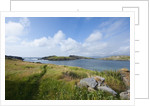 Ballydonegan Bay, Ring of Kerry, Kerry County, Ireland by Corbis