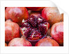 Pomegranates in Carmel Market by Corbis
