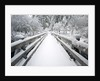 Footbridge covered in snow, Silver Falls State Park, Oregon, USA by Corbis