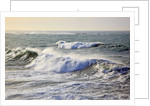 Winter storm waves crash on headline at Shore Aceres State Park, Oregon, USA by Corbis
