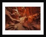Slotcanyon Little Wildhorse Canyon by Corbis