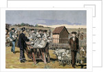 Pasteur, Louis (1822-1895). Vaccination of sheep against anthrax by Corbis