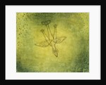 Down the More Troubling Bird by Paul Klee