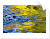 Colorful water surface by Corbis