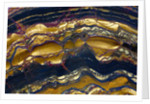 Tiger Eye by Corbis