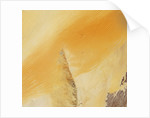 Linear Sand Dunes in the Empty Quarter, Arabian Peninsula by Corbis