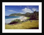 Landscape with sandy beach, Guadeloupe, France by Corbis