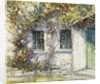 Cottage in Summer by Kershaw Schofield