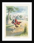 The Silly Hare, Children's Illustration by Corbis