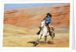 Cowgirl riding the range by Corbis