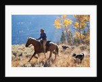 Cowgirl and her dogs by Corbis