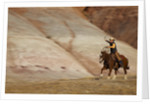 Cowboy in The Painted Hills by Corbis