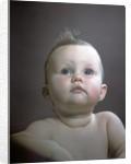 1940s 1950s Portrait Baby Head Shoulders Looking Up by Corbis