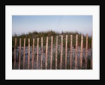 Fence in Sand Dunes, Cape Cod, Massachusetts by Corbis