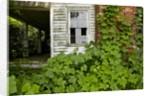 Abandoned Farmhouse, Armour, North Carolina by Corbis