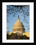 US Capitol Dome by Corbis