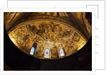 Domed Ceiling of the Basilica of San Francesco d'Assisi by Corbis