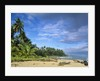 Beach in Limon, Costa Rica by Corbis
