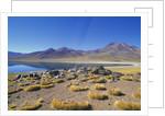 Atacama Desert by Corbis