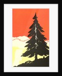 Lone Pine Silhouette by Corbis
