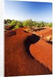 Red earth area of the Waimea Canyon by Corbis