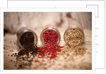 Black, red, and white pepper corns in rustic mason jars by Corbis