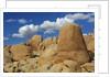 Sandstone erosion landscape in Joshua Tree National Park by Corbis
