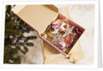 Box with Chistmas ornaments next to Christmas tree, Munich, Bavaria, Germany by Corbis