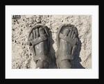 Mud-covered Feet, Chobe National Park, Botswana by Corbis