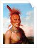Sharitarish (Wicked Chief), Pawnee by Charles Bird King