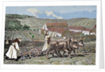 Monks ploughing the land with oxen. Germany. by Corbis