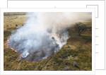 Bushfire in the Okavango Delta by Corbis