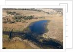 Aerial view of Okavango Delta by Corbis