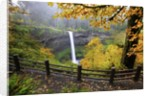 Fall colors add beauty to South Silver Falls, Silver Falls State Park, Oregon by Corbis
