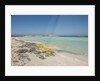 Balearic Islands - Ses Illetes beach by Corbis