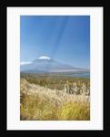 Lake Yamanaka & Mt. Fuji by Corbis