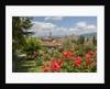 Giardino delle Rose by Corbis