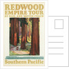 Travel Poster for the Redwood Empire by Corbis