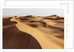 Desert sand dunes by Corbis