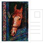 Horse by Corbis