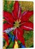 Red Flower by Corbis