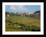 Autumn Vineyards with Bright Color Near Panzano by Corbis