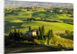 Evening Light at the Belvedere House surrounded by Winter Wheat in Southern Tuscany by Corbis
