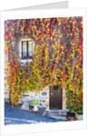 Autumn foliage around Tuscan Villa by Corbis