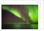 Aurora Borealis or Northern Lights, Iceland by Corbis