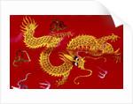 Chinese dragon, Shenzen, China by Corbis