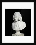 Bust of Francois Marie Arouet de Voltaire by Jean-Antoine Houdon