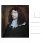 Portrait of a Man, Presumed to be Jean Baptiste Colbert by Philippe de Champaigne