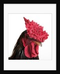 Derbyshire Redcap Rooster by Corbis
